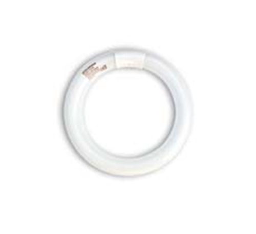 Picture of 22 Watt Circline Philips UV Tube